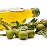 Aceite y aceitunas: La variedad Picual