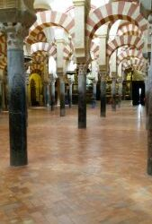 El aceite de oliva en la cultura Árabe: origen y recetas.