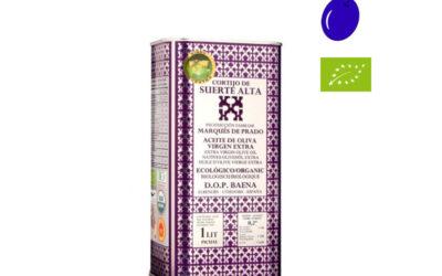 Picual en envero de Cortijo de Suerte Alta, un aceite de oliva exclusivo